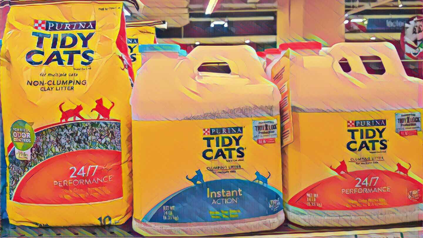 5 Best Clumping Cat Litter In 2019 Find The Purr Fect