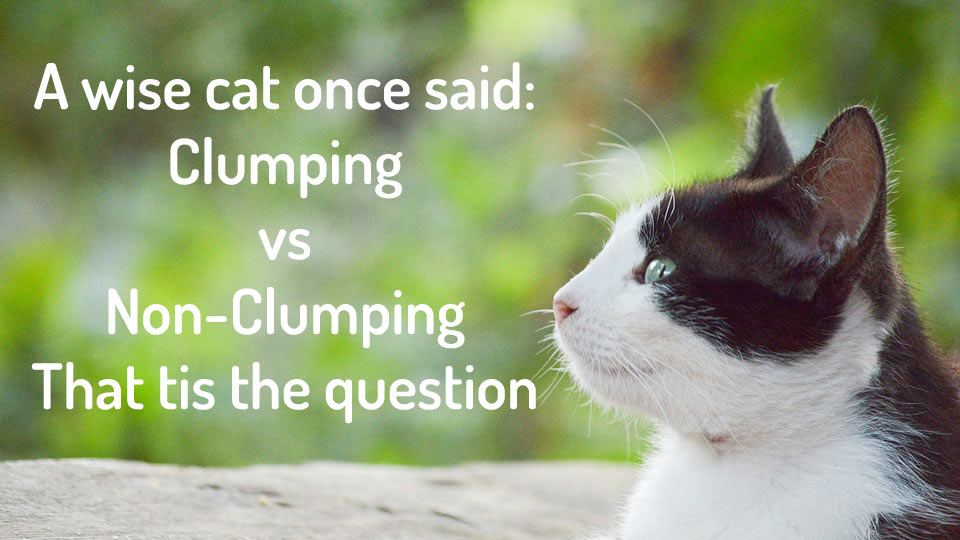 Clumping vs Non Clumpin
