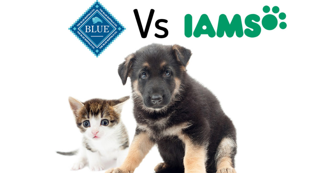 Blue Buffalo vs Iams