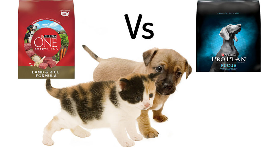 Purina Pro Plan vs Purina