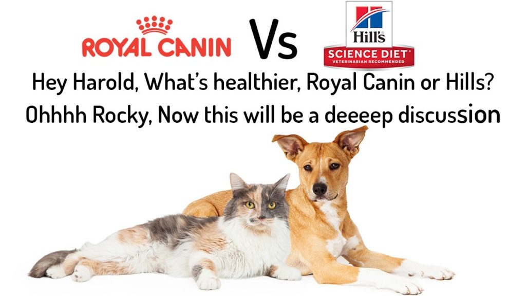 Hills Science Diet vs Royal Canin