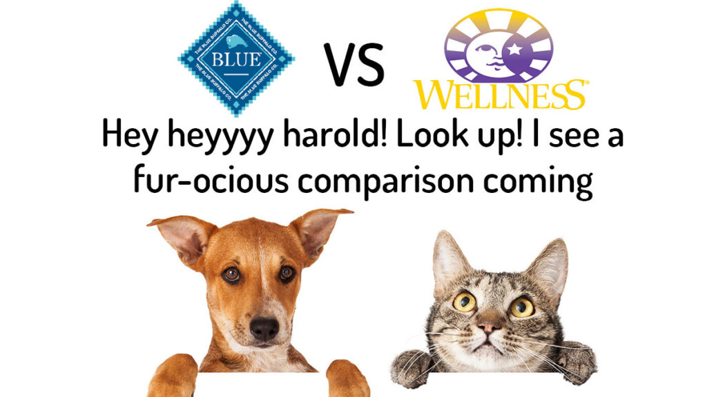 Blue Buffalo vs Wellness