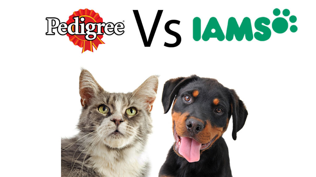 Pedigree vs Iams