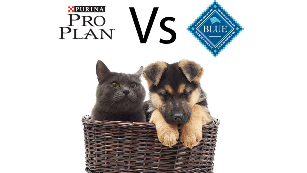 Purina Pro Plan vs Blue Buffalo