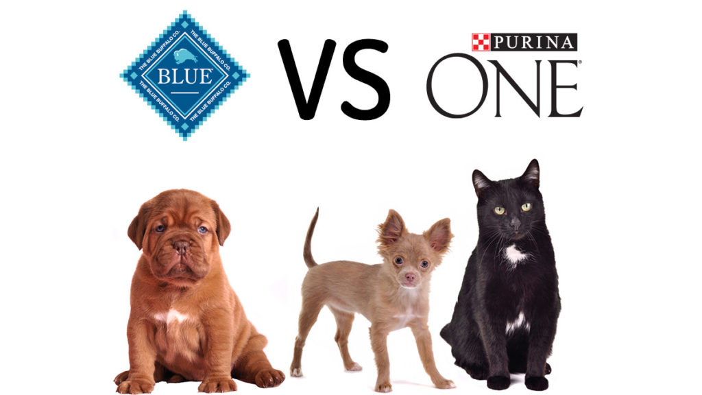 Blue Buffalo vs Purina One